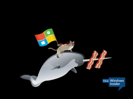 Windows Insider Ninjacat Narwhal 1024x768 Desktop1