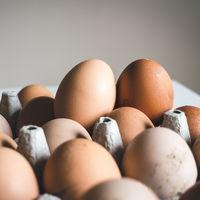 Euskadi destruye la primera partida detectada de huevo líquido contaminado con pesticida
