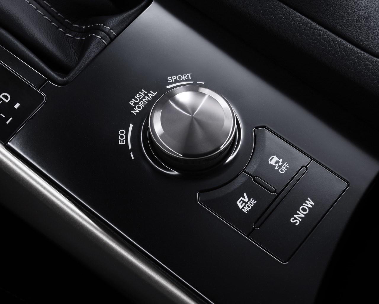 Foto de Lexus IS 300h (10/53)
