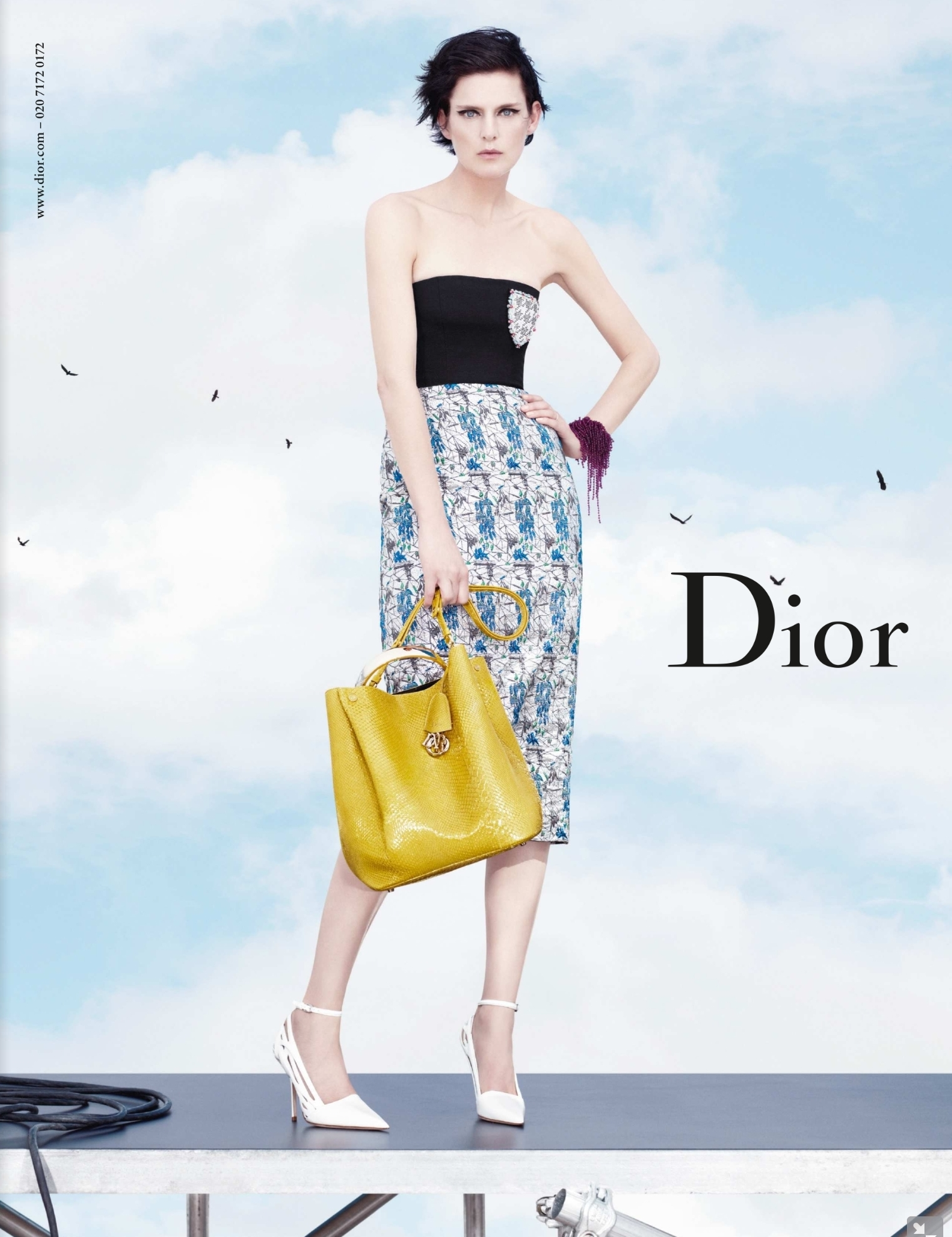 Foto de Christian Dior Primavera-Verano 2014 (3/6)