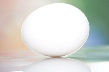 Cómo pasteurizar huevos en casa