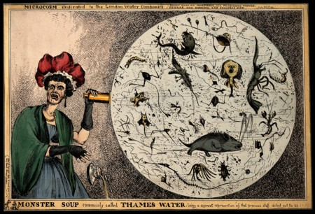 Monster Soup Commonly Called Thames Water Wellcome V0011218