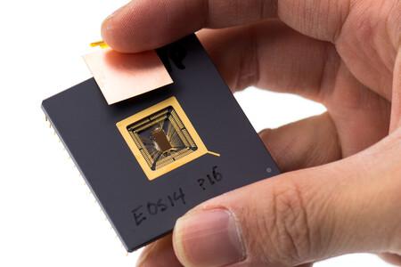 Llega un nuevo competidor al mercado de los procesadores, y no fabricará chips x86 o ARM: ha apostado por la arquitectura RISC-V
