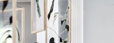 Cómo hacer cuadros preciosos con flores secas y marcos transparentes