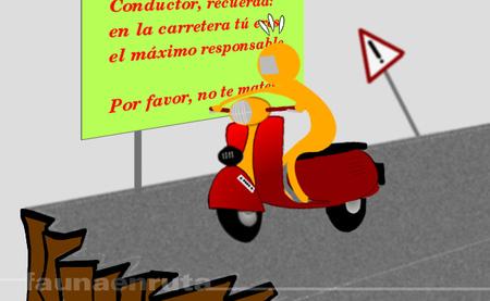 fauna en ruta: precaución, amigo conductor
