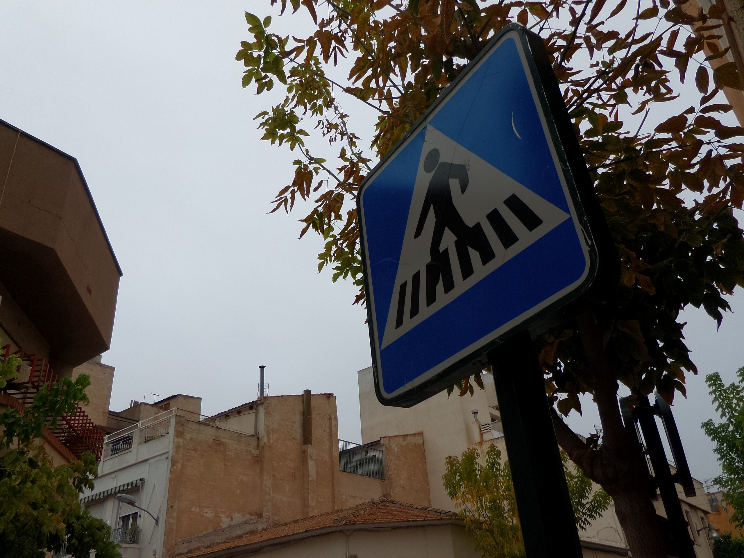 Foto de ASUS Zenfone Zoom muestras (11/11)