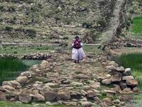 El Sistema Vial Andino o Qhapaq Ñan es declarado Patrimonio de la Humanidad