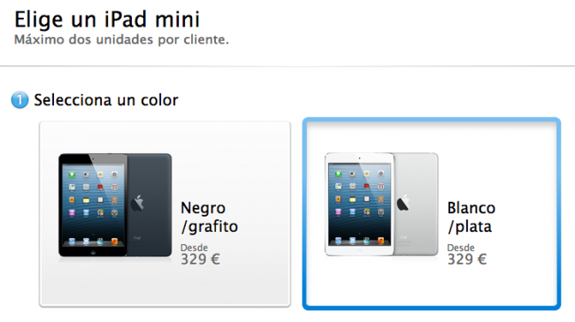 Apple Store iPad mini
