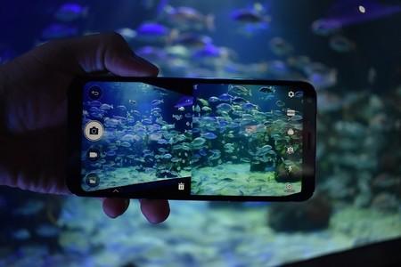 Lg Q6 Smartphone Gama Media Sin Marcos