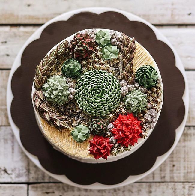 Ivenoven Succulentcake3