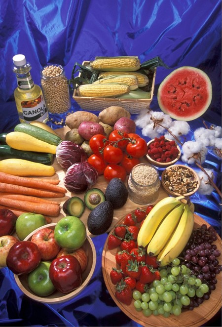 Genetically Modified Foods 520861 1280
