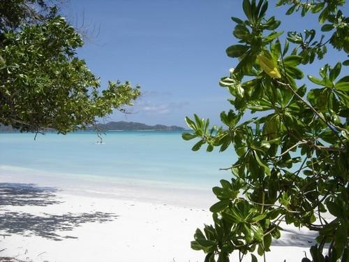 Foto de Seychelles (8/9)