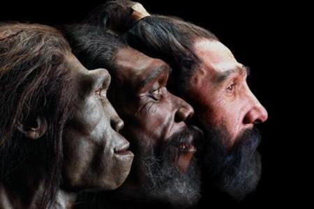 Cómo ha evolucionado la apariencia de la humanidad