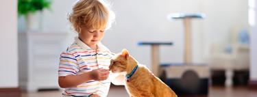 La muerte de la mascota: cómo ayudar al niño a superar la pérdida de su fiel amigo
