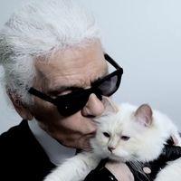Así es como Choupette, la querida gata de Karl Lagerfeld, podría haber heredado parte de la fortuna del káiser de la moda