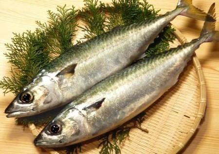 Lo que hizo que un pescado barato japonés se convirtiera en una carísima delicatessen
