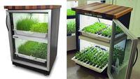 Urban Cultivator, verduras siempre frescas en nuestras cocinas