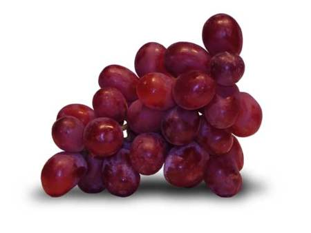 Pastillas de concentrado de uva, 'la fuente de la eterna juventud'