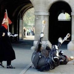 Foto 37 de 95 de la galería 95-fotos-de-reuters-como-inspiracion en Xataka Foto