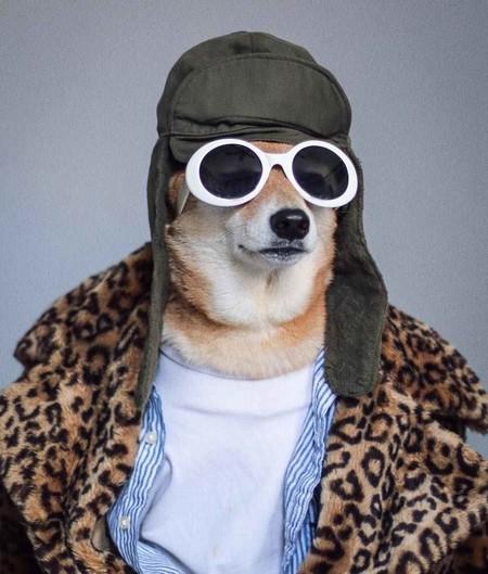 En El Nuevo Ano Chino Dedicado Al Perro Recordamos Los Mejores Looks De Nuestro Favorito Mensweardog 02