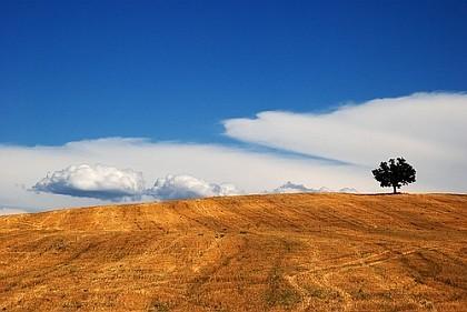Paesaggio umbro de Capannelle