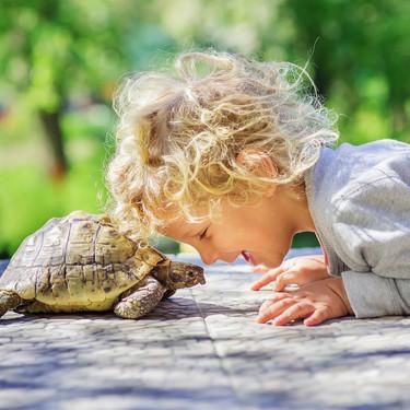 La 'técnica de la tortuga': cómo ponerla en práctica con los niños para que aprendan a controlar sus impulsos