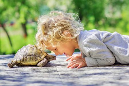La técnica de la tortuga: cómo ponerla en práctica con los niños para que aprendan a controlar sus impulsos