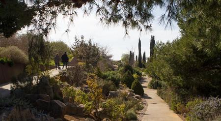 Jardín Botanico Barcelona