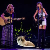 Amigos para siempre edición verano: Taylor Swift canta 'Smelly Cat' con Phoebe Buffay