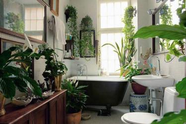 Baños con auténticos jardines dentro
