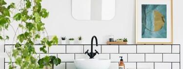 Los mejores productos para eliminar la humedad y el moho en el baño