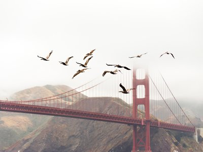 Cómo San Francisco desplazó 100 metros los lugares donde se cometían asesinatos: un argumento contra las cámaras de seguridad