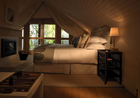 Habitación Lime Wood