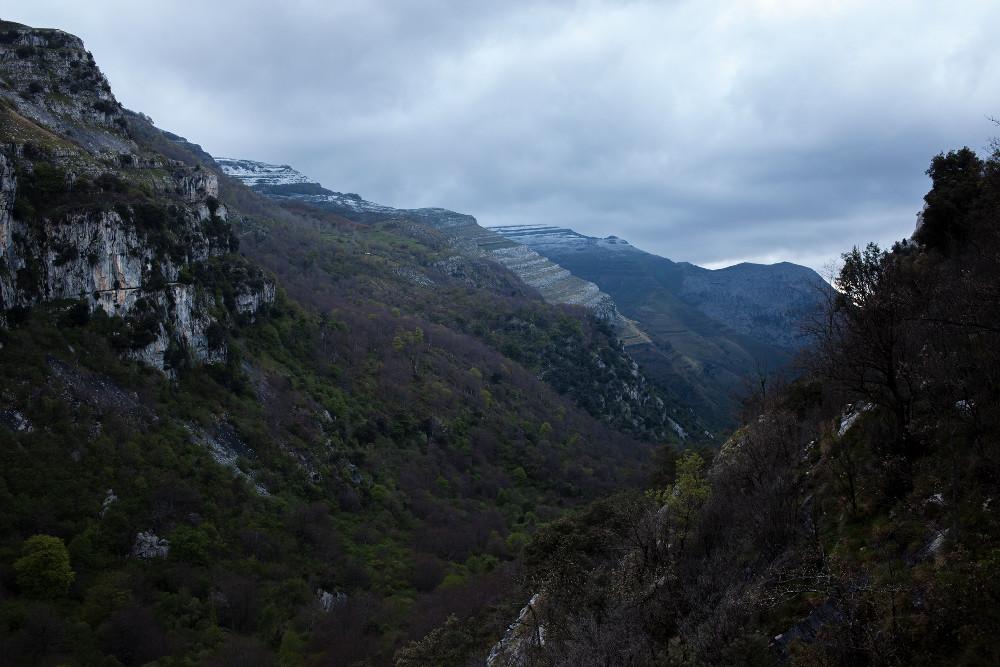 Panoramica Iv