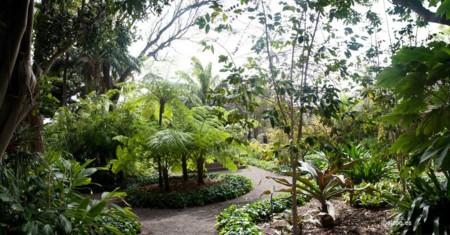 Botanico Tenerife