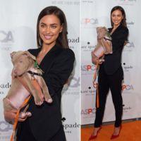De la Irina Shayk solidaria con ASPCA a la más sexy, ¿con cuál nos quedamos?