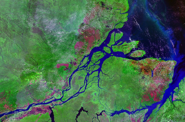 Mouths Of Amazon℗ Geocover 1990