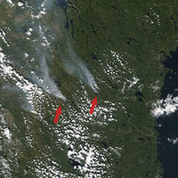 En plena ola de calor, los bosques antaño inmaculados del Ártico son ahora pasto de las llamas