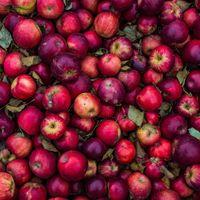 Las manzanas rojas tienen los días contados