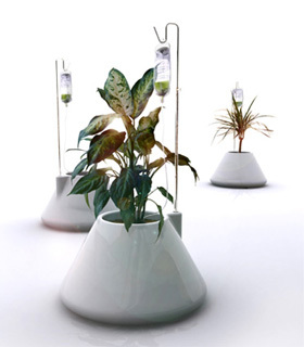Suero para las plantas