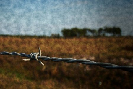 El Viejo Oeste, Internet y el alambre de espino