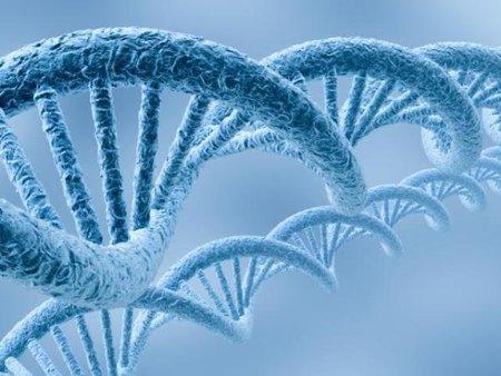 La exagerada importancia que se le otorga a los genes en relación a la enfermedad que sufres