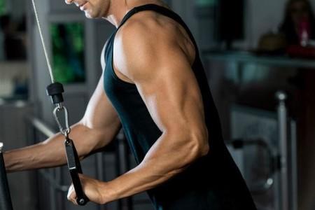 Entrenamiento Triceps