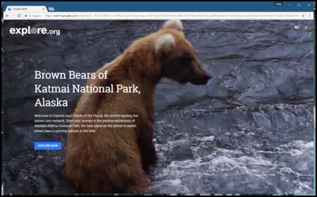 Ahora puedes mirar vídeos de la naturaleza en tiempo real desde Google Earth