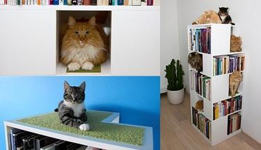 The CatCase, la estantería perfecta para hogares con gatos