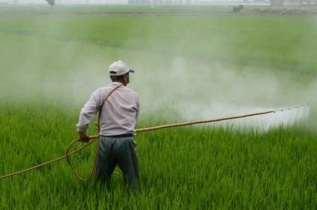 plaguicidas-cultivo
