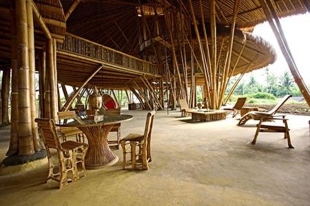 escuela bambú 2