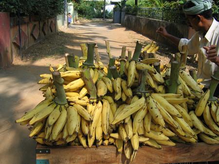 El plátano macho: un ingrediente para platillos dulces y salados