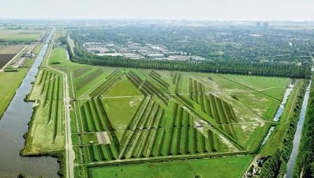Lo que necesitan los aeropuertos para reducir el ruido generado es un buen jardinero