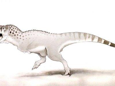 Se encuentra uno de los últimos dinosaurios que vivió antes de la extinción